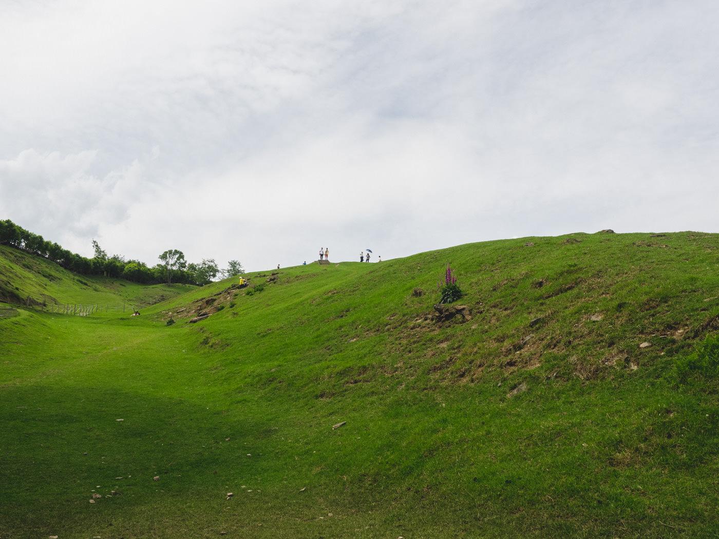 Taiwan - Qingjing Farm - Big grass field