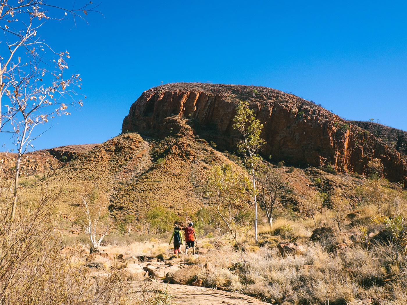 Odd shape mountain at Ormiston Gorge